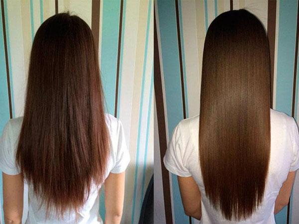 Растения для роста окрашивания волос