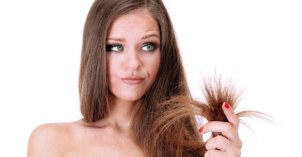 Как бороться с сухими кончиками волос