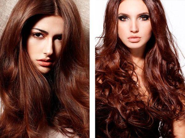 Корица цвет волос фото